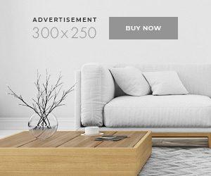 online-magazine-ad-300×250-1